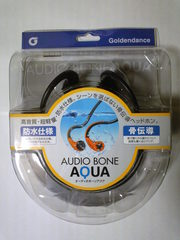 20091012_kotsudendoh_headphone